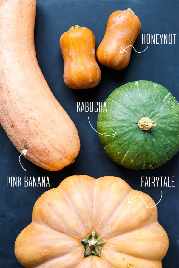 Kinds of squash